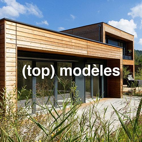 constructeur de maisons en bois contemporaines. Black Bedroom Furniture Sets. Home Design Ideas