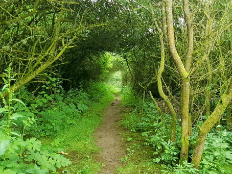 Ford to Temple Guiting Walk