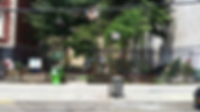 SWS Garden- LeadPhoto copy.png