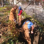 Sustainable South Bronx work day at Roberto Clemente Community Garden