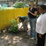 Workday at Daly Avenue Garden