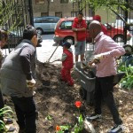 Soil and Veggie Workshop at Daly Avenue Garden