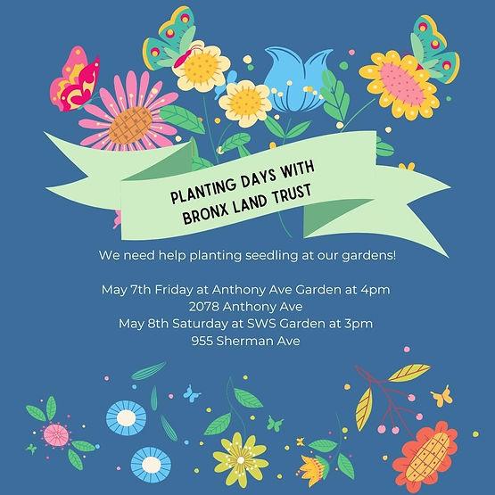 2021 Planting Day- Anthony-SWS.jpeg
