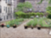 Mapes Ave Garden- LeadPhoto copy.png