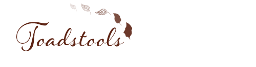 annamarie_page_banner_toadstools.png