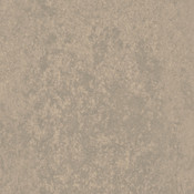 AE-1718.jpg