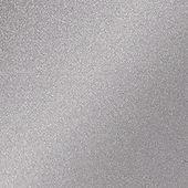 Satin Aluminum 120 PANTONE 877 C