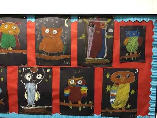 Amazing Owl Art