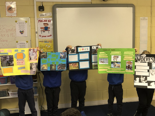 1st Class Projects
