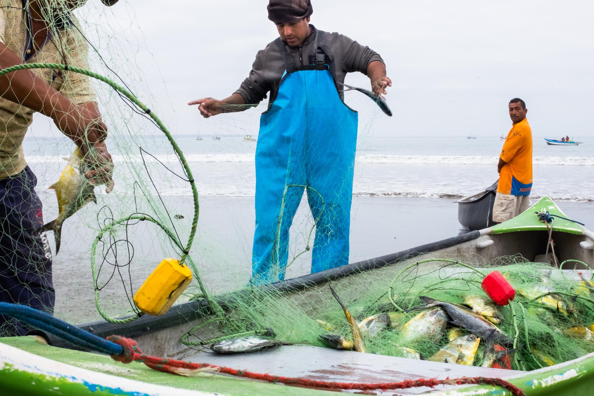 Colan fishermen 3