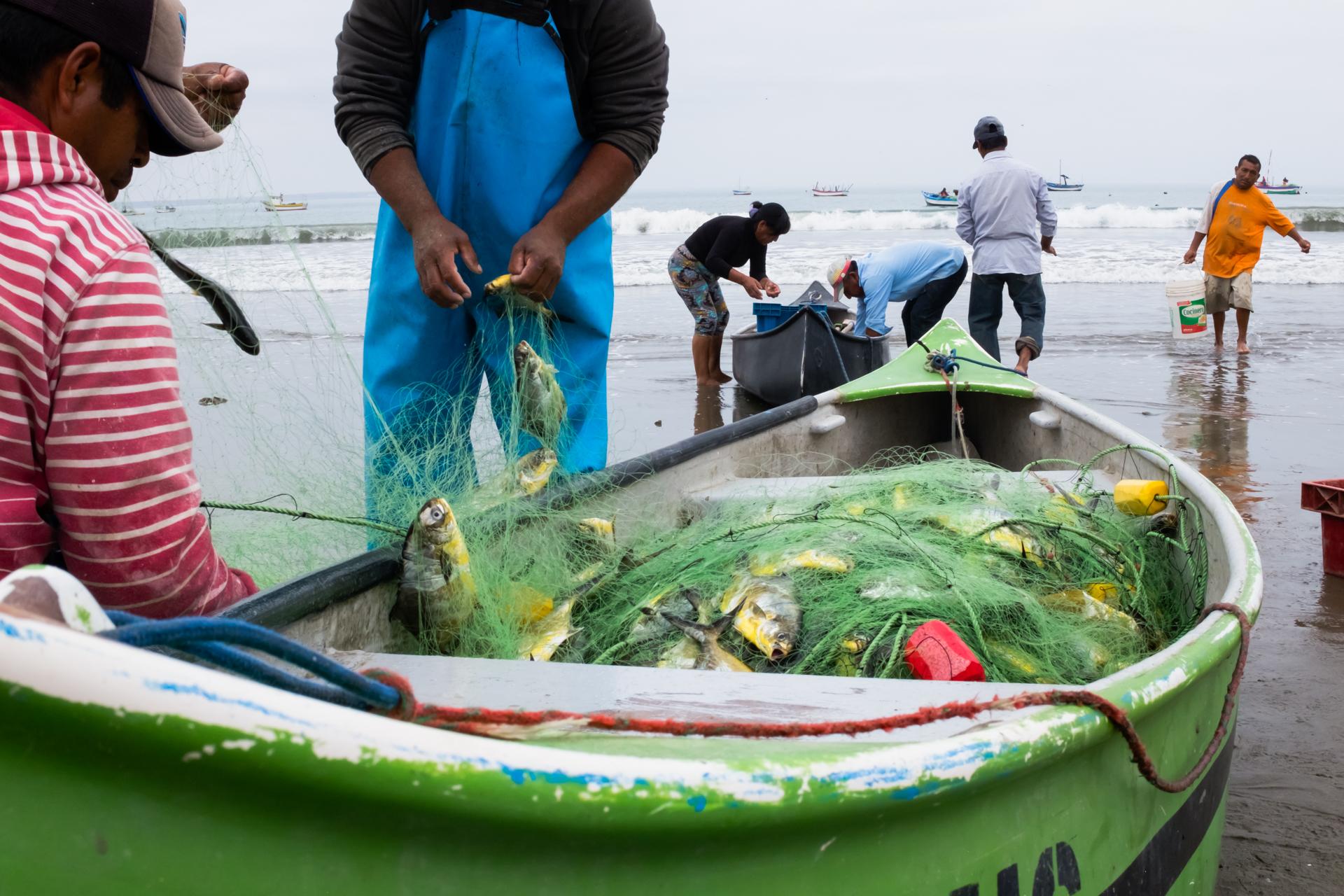 Colan fishermen 1