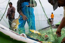 Colan fishermen 5