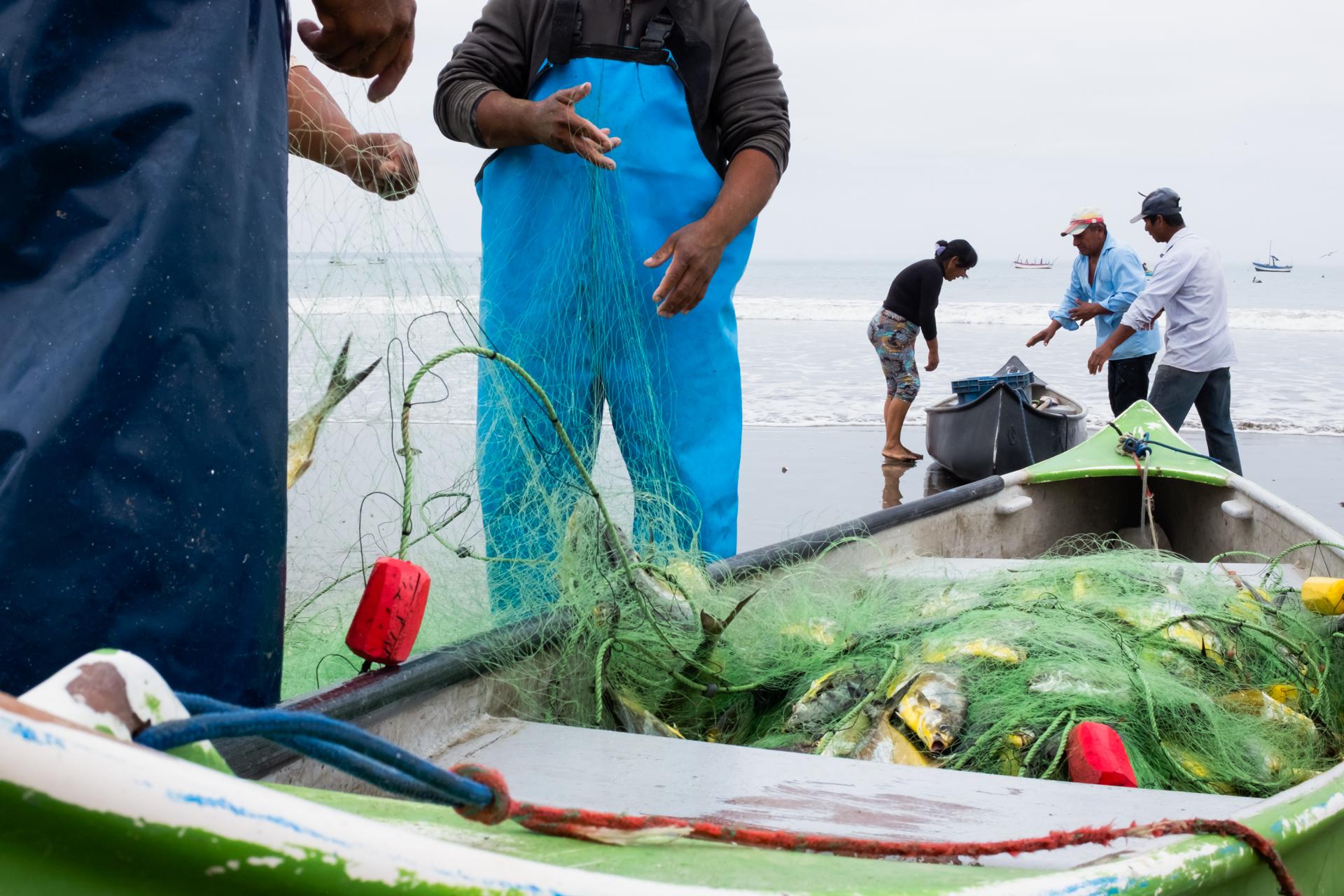 Colan fishermen 2