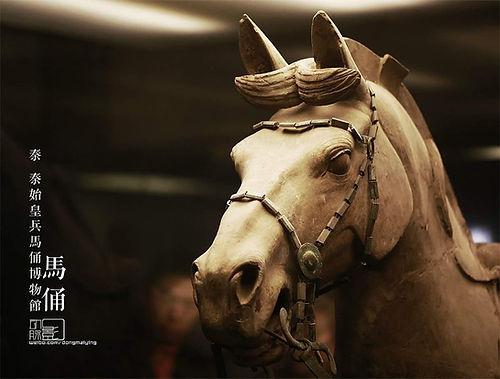 Details of Terracotta Horse