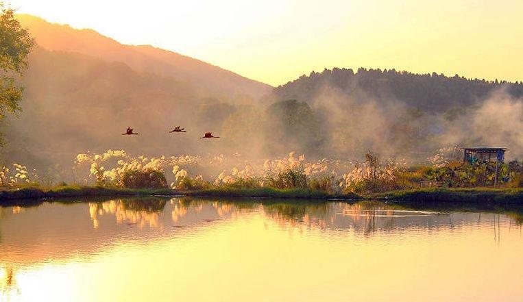 Luoyan or Landing Wild Goose Scenic Area of East Lake