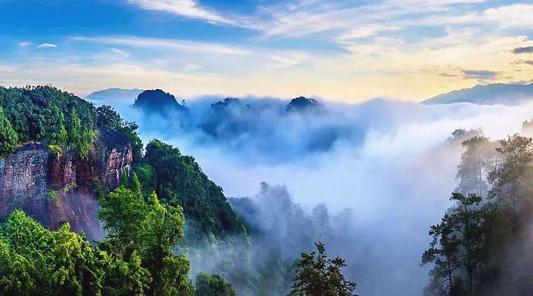 Cloud Sea of Mount Wuyi