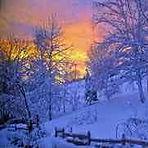 Snow Cyan — Xue Qing (雪青)