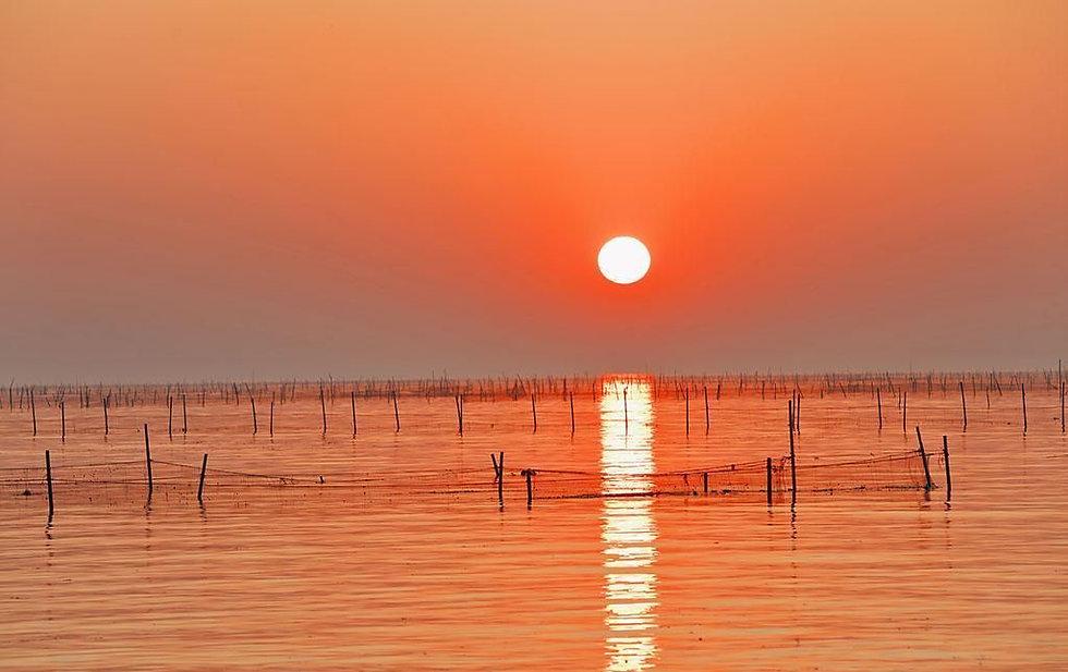 Hongze Lake.jpg