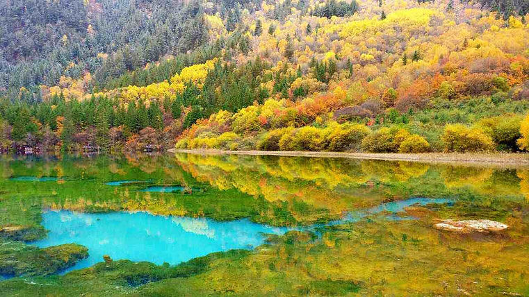 Beautiful Lake in the Jiuzhaigou Valley Scenic and Historic Interest Area of Sichuan Province, Photo by Leonoyes.