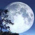 Moon White — Yue Bai (月白)