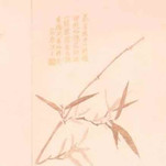 Gladiolus Fabric — Shi Yang Jin (十样锦)