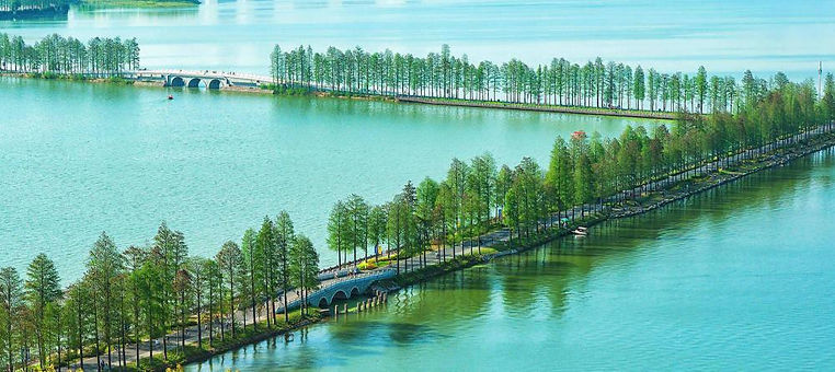 Part of East Lake Greenways, Photo from Official Site of East Lake Scenic Area of Wuhan.