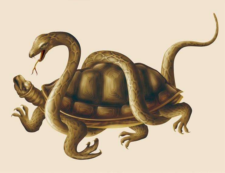 Mythical creature Black Turtle-Snake in Northern sky in Chinese Mythology