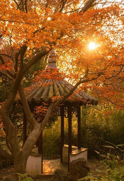 Singing Pavilion or Shuxiao Ting of Lingering Garden