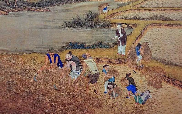 Collectivism in Chinese Agricultural Activity