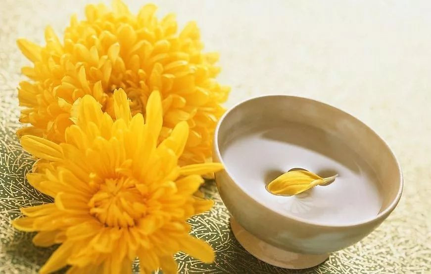 Chrysanthemum Wine, Juhuajiu