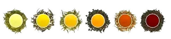 Six Main Types of Chinese Tea