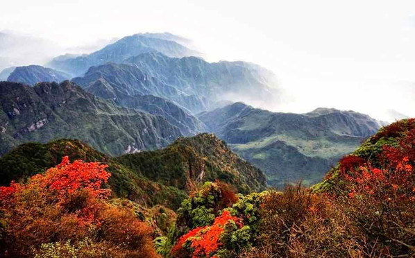 Colorful Autumn Scenery of Mount Emei.