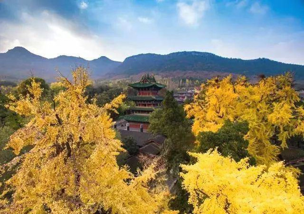 Buildings of Shaolin Temple