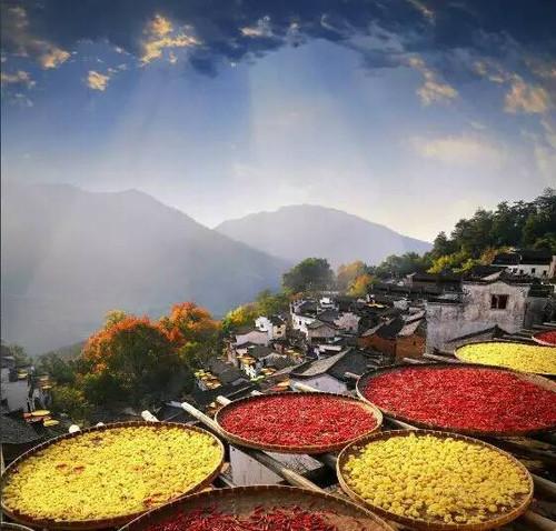 Bask Autumn, or Shai Qiu on Double Ninth Festival