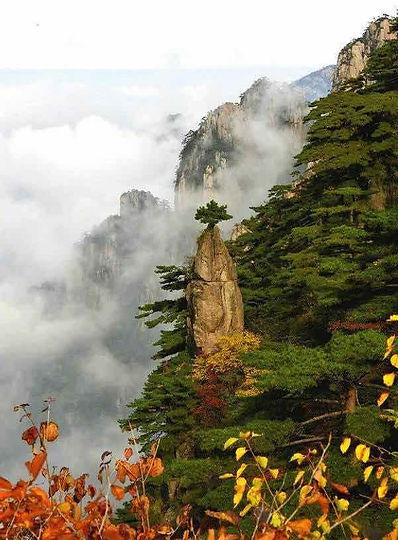 Blooming on Writing Brush or Mengbi Shenghua of Huangshan Mountain