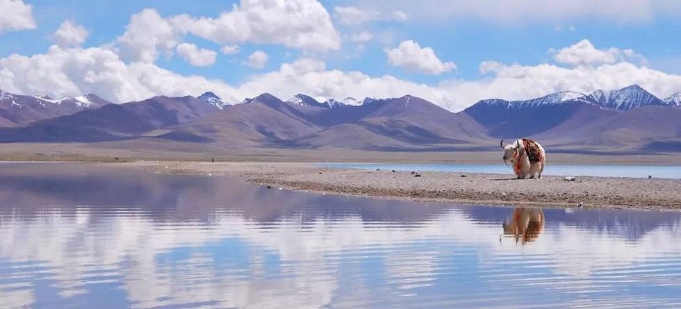 Namtso Lake.jpg