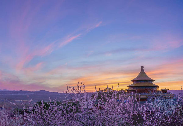 Flowers and Ancient Buildings of Chengde Mountain Resort