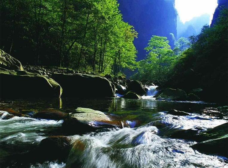 Golden Whip Brook or Jinbianxi in Zhangjiajie, Photo from Official Site of Zhangjiajie National Forest Park.