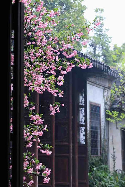 Flowers and ancient building of Lingering Garden of Suzhou, photo from the official site of Liuyuan.