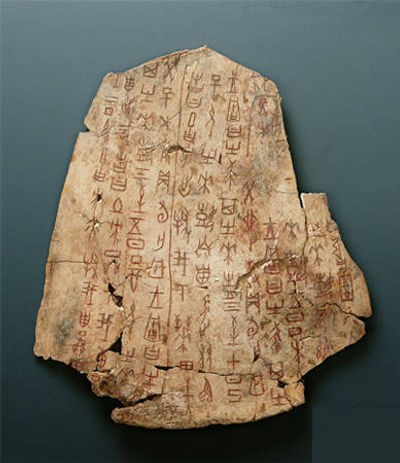 Scripts on Oracle Bones of the Shang Dynasty