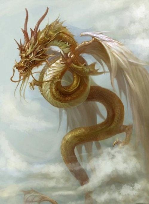 Dragon Ying Long