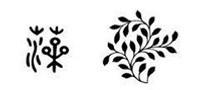 Algae in Chinese Pattern Culture