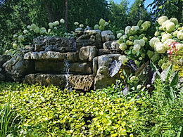biodiversity in your yard, Ecosystem pond building, water features, specializing in waterfall construction,