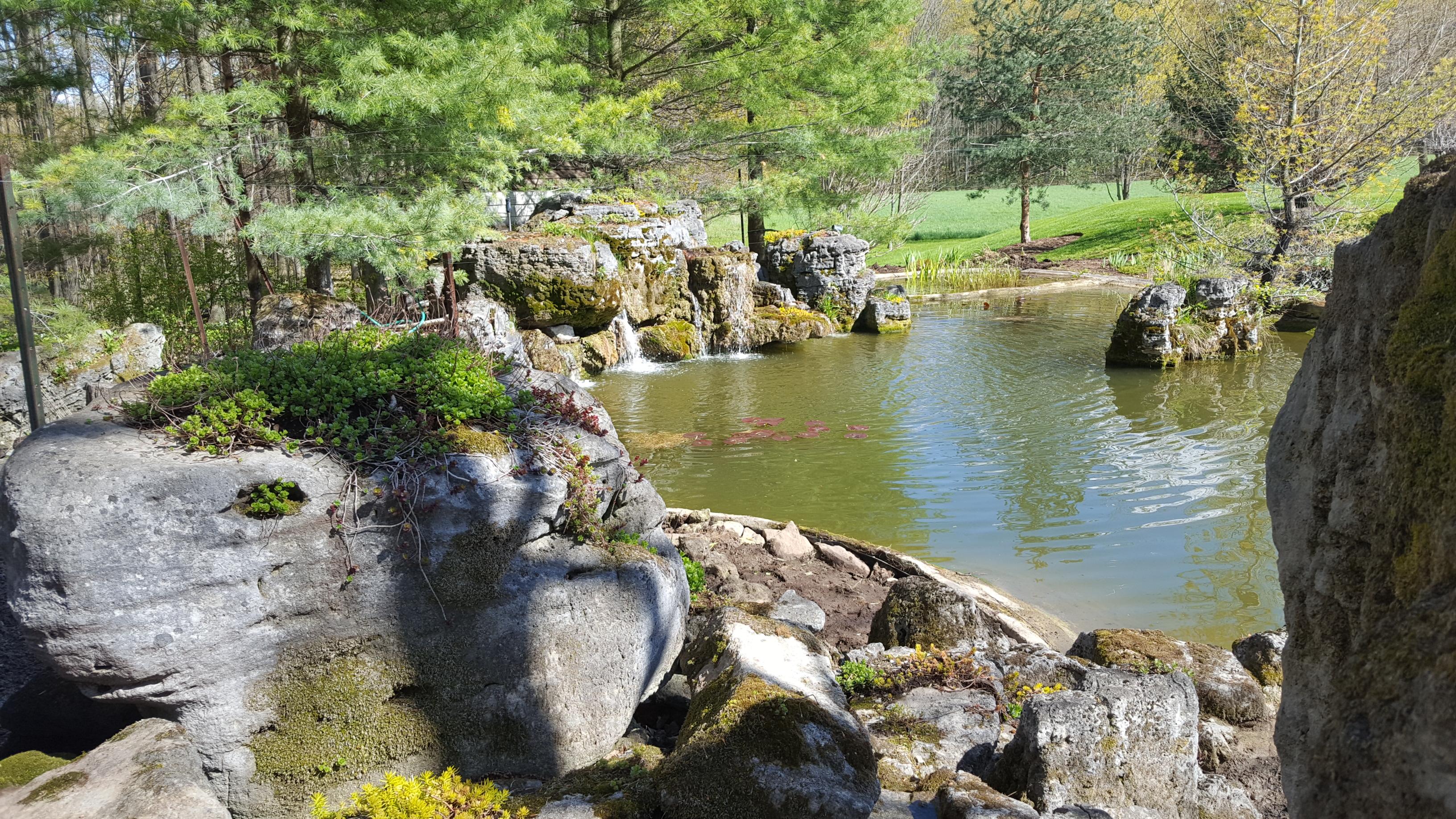 Ontario's nicest pond