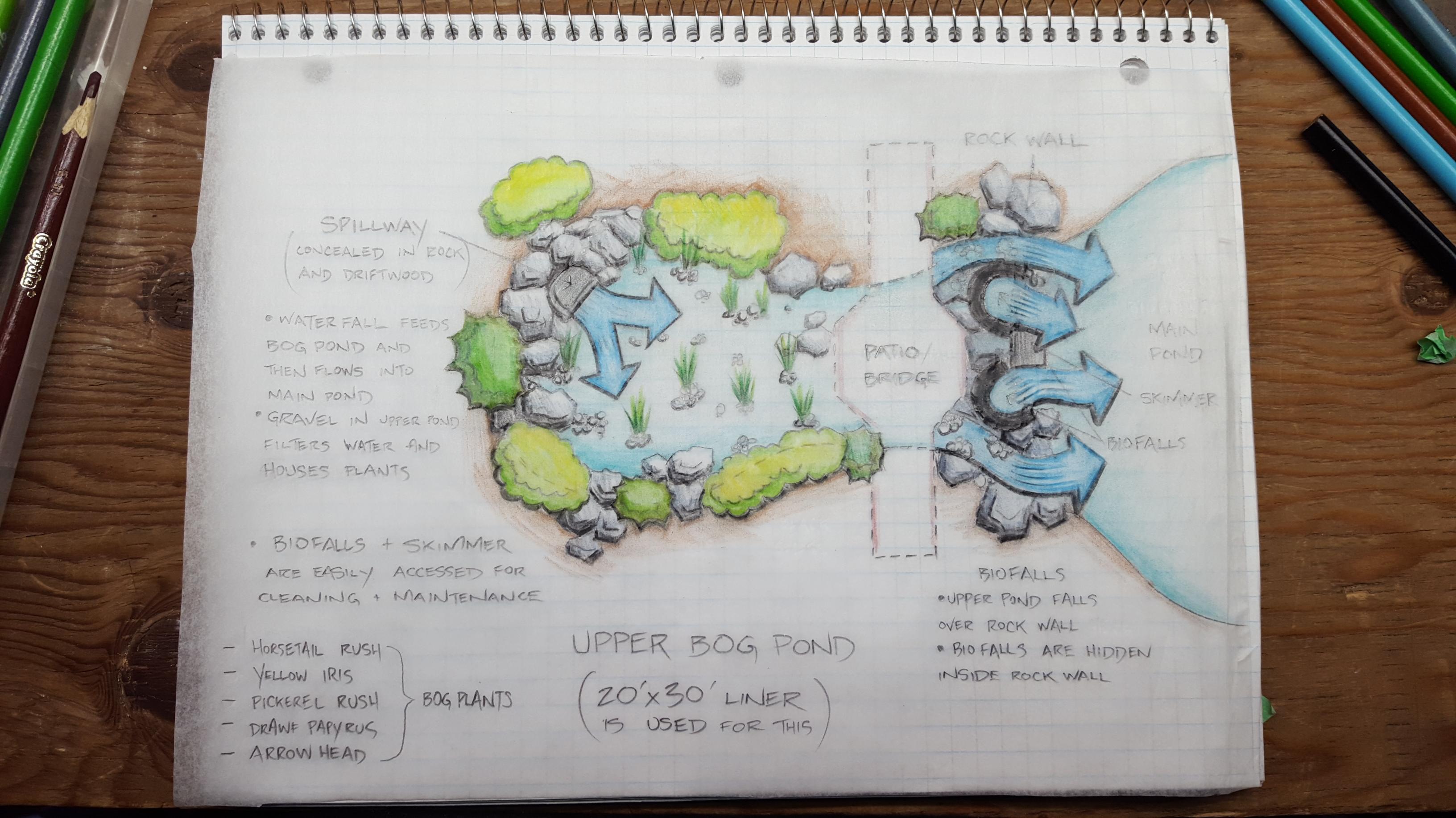 Bog Pond Design