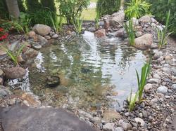 Gerry's pond