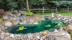 Jas' Pond