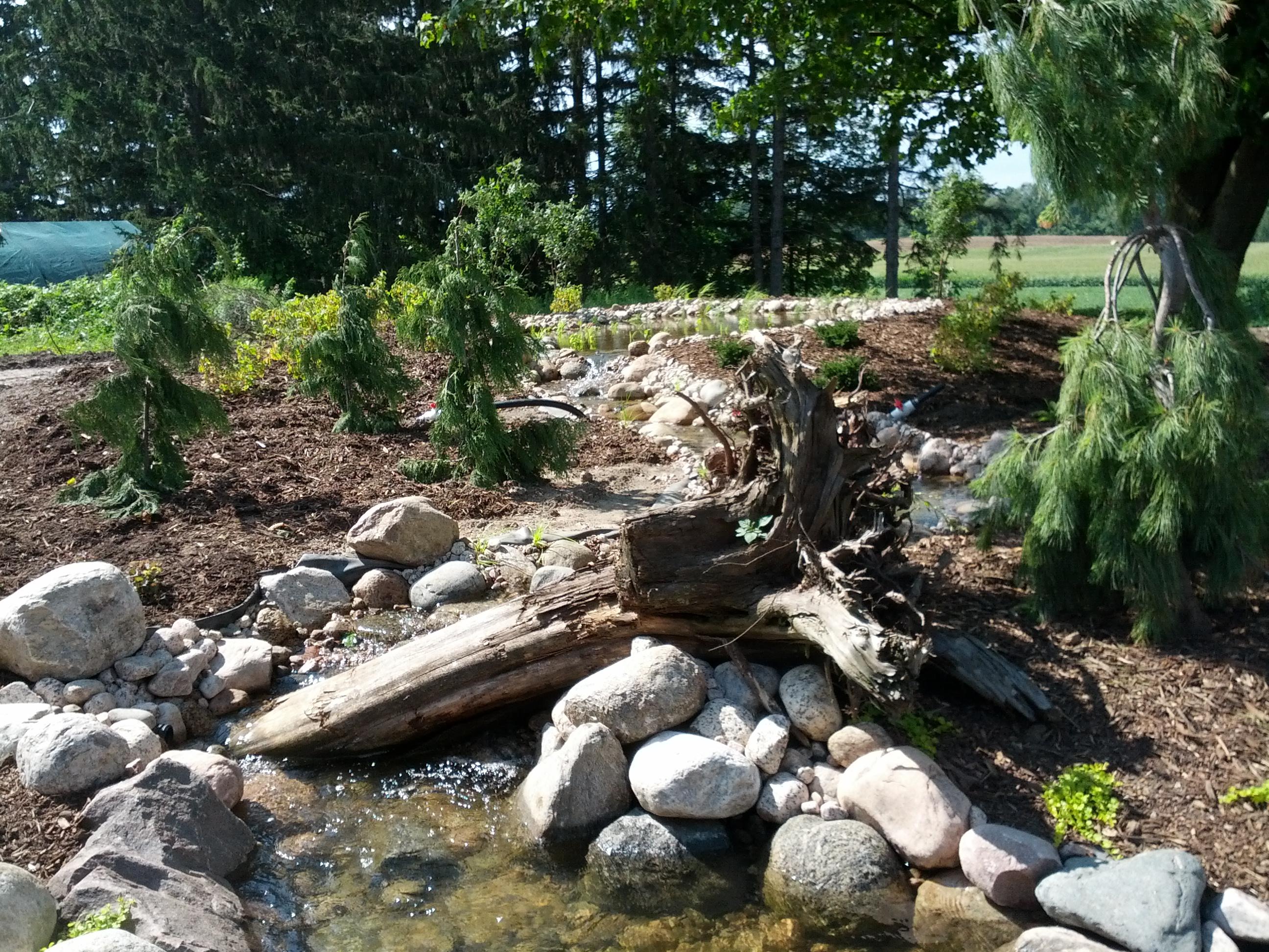 upper pond finished