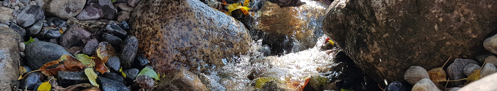 Pondless in the fall_edited.jpg