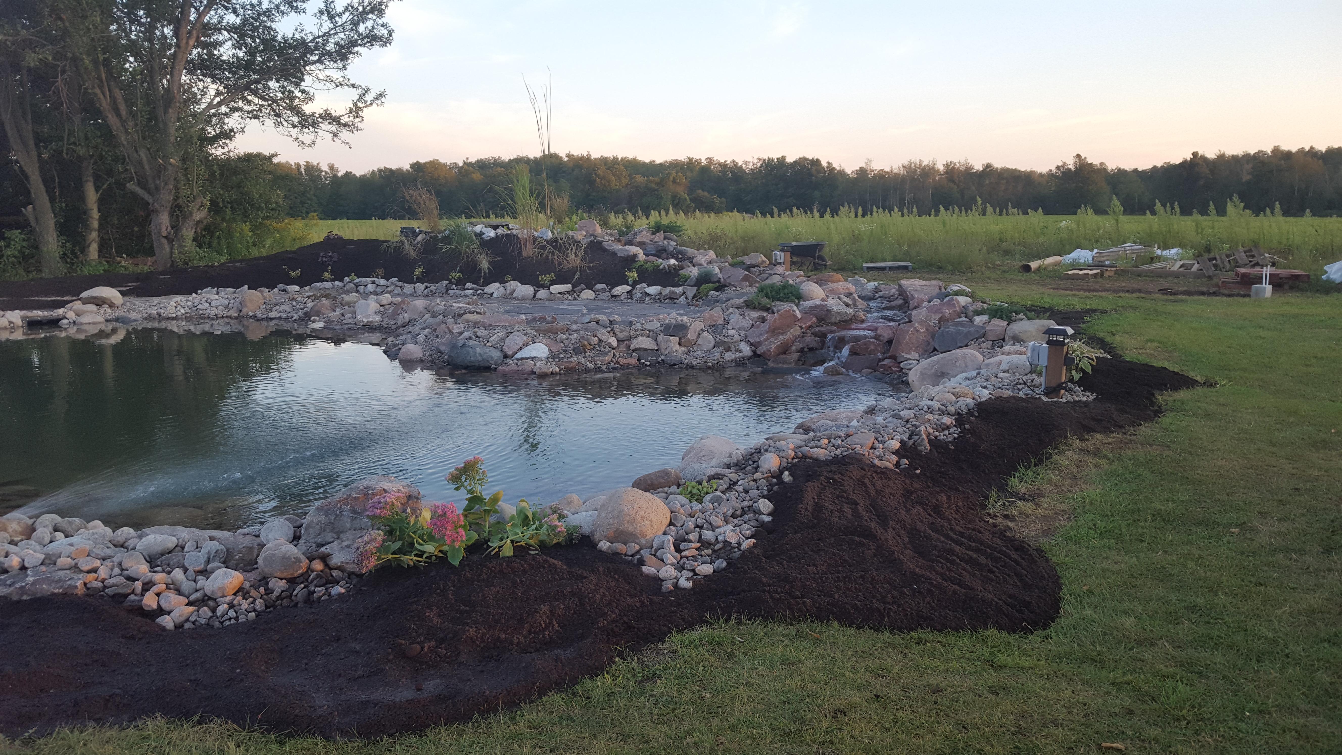 Swim Pond - Finished